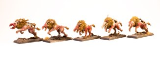 Age-of-Sigmar-Dire-Wolves-blanchitsu-group-2