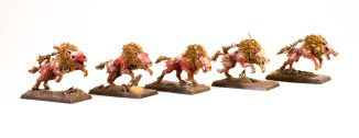 Age-of-Sigmar-Dire-Wolves-blanchitsu-group